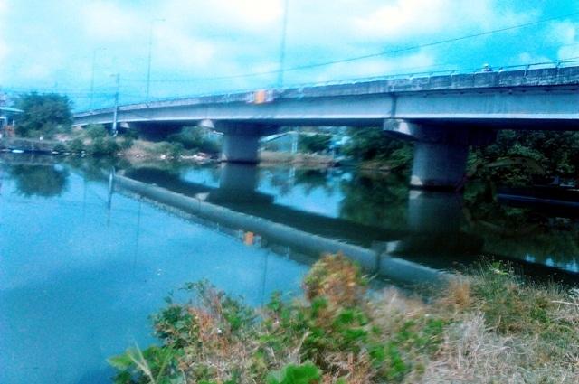 Dân nôn ói vì mùi hôi thối từ trại heo xả thải ra sông gây ô nhiễm! - 3
