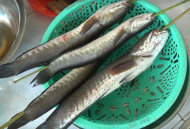 Cá bắt được sẽ phân loại ra về chế biến làm nhiều món khác nhau