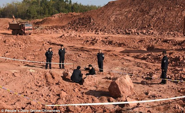 Khoảng 30 quả trứng khủng long hóa thạch, ở tình trạng gần như hoàn hảo, đã được tìm thấy vào ngày 25/12 vừa qua tại một công trình xây dựng ở Cám Châu, Trung Quốc.