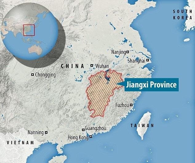 """Những quả trứng đã được tìm thấy ở thành phố Cám Châu, tỉnh Giang Tây, nơi vốn được biết tới là """"quê hương khủng long"""" tại Trung Quốc."""