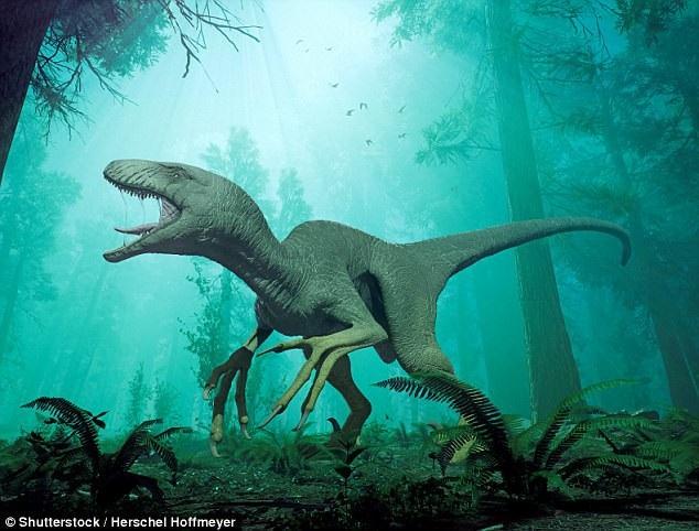 Tìm thấy phần xác ướp khá nguyên vẹn giống khủng long - 2