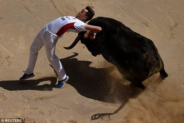 Người cưỡi bò trình diễn trong trường đấu bò của thành phố Pamplona.