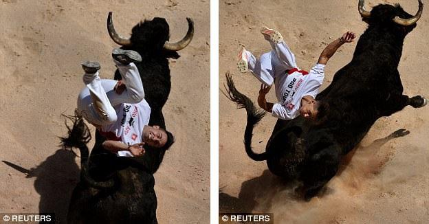 """Người cưỡi bò trình diễn thành thục bên chú bò tót bị chọc giận đang """"hăng tiết""""."""