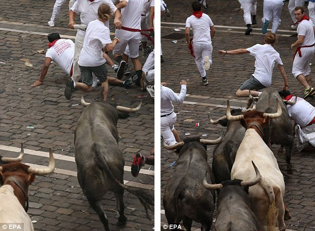Người thanh niên bị bò húc bay và bị cuốn vào đường chạy của đàn bò (quần kẻ sọc).