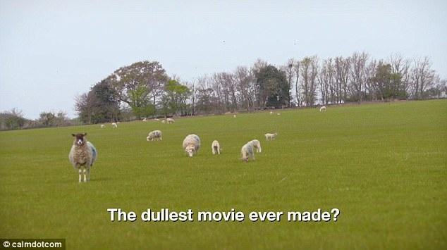 """Bộ phim kéo dài 8 tiếng đồng hồ và được xem là bộ phim """"chán"""" nhất từng thấy. Ngay cả nhà sản xuất phim cũng đồng ý với nhận định này."""