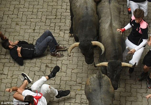 Cuộc chạy đua với bò tót trong ngày thứ hai chứng kiến hai người bị bò húc và tổng cộng 10 người nhập viện.