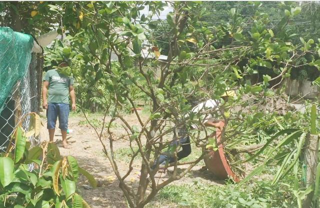 Hình ảnh người nhà bà Trương Hoàng Anh trong một lần đập phá tài sản của gia đình ông Ngôi. (Ảnh: Người nhà nạn nhân cung cấp).