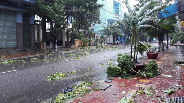 Đường phố ngổn ngang, nhà mất mái khi bão số 12 đổ bộ - 13