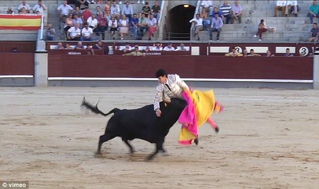 Người đấu bò có tên Juan Miguel bị thương khá nặng ở cổ và hông.