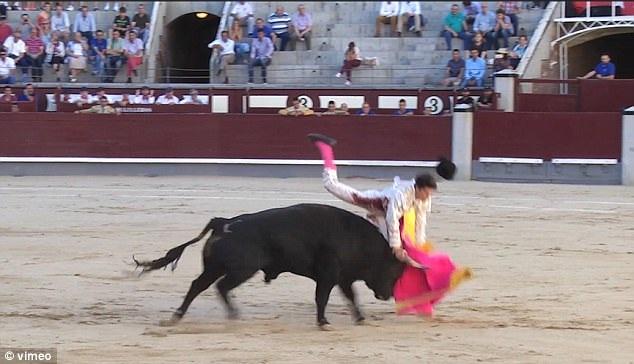 Người đấu bò Juan Miguel cố gắng tự bước đi, nhưng chỉ được vài bước, khi đã ra tới rìa sân đấu, anh bị ngất xỉu.