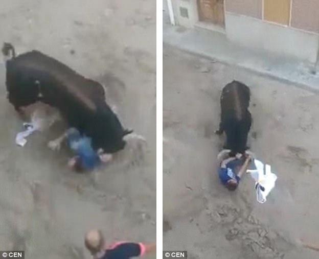 Trong đoạn video clip được ghi lại bởi một người chứng kiến vụ việc thương tâm, có thể thấy con bò tót đã tập trung tấn công một mình anh Amadeo.