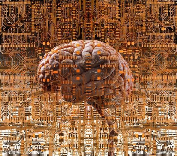 Não người có thể trở thành trí tuệ nhân tạo.