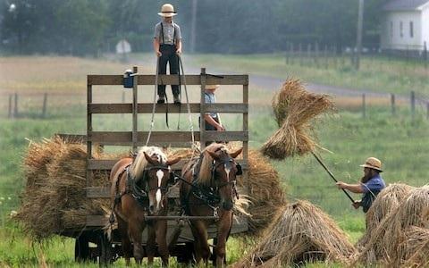 Người Amish sống thọ hơn nhờ có gen chống lão hóa - 1