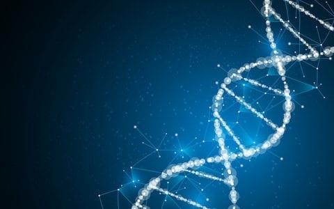 Người Amish sống thọ hơn nhờ có gen chống lão hóa - 2