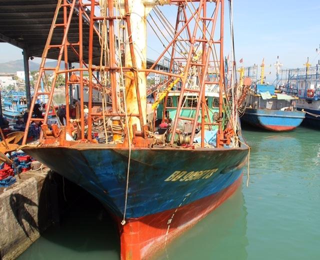 Chuyên gia nhận định việc gỉ thép của các con tàu ở Bình Định là do doanh nghiệp làm dối, sai quy trình, quy chuẩn.