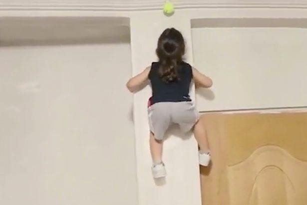 """Bé 3 tuổi tay không trèo tường như """"người nhện"""" - 2"""