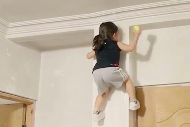 """Bé 3 tuổi tay không trèo tường như """"người nhện"""" - 3"""