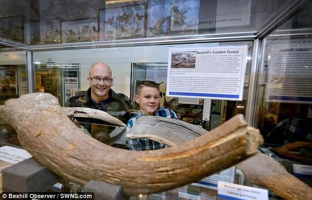 Khúc gỗ tưởng chừng như vô hại lại là chiếc sừng của bò rừng cổ đại cách đây 6000 năm còn sót lại