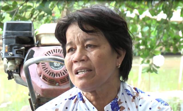 Bà Bảy đã nhiều năm liền đưa các em học sinh đến trường ngày 2 buổi nhưng không hề nhận một đồng tiền nào từ cha mẹ các bé.