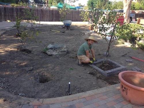 Mỗi sáng, anh thường bắt đầu một ngày mới bằng việc ra vườn, chăm cây, tỉa cành, hoặc ngồi thưởng trà, ngắm khu vườn của mình…