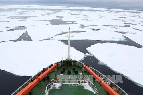 Diện tích băng ở Nam Cực giảm xuống mức kỷ lục do hiện tượng ấm lên toàn cầu. Ảnh: AP/TTXVN