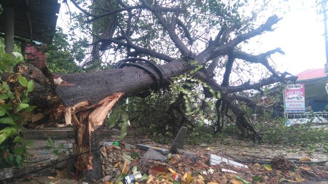 Ngày 25/7, bão số 4 đã đổ bộ vào đất liền các tỉnh Hà Tĩnh-Quảng Trị. Không chỉ các tỉnh nằm trong vùng tâm bão mà nhiều địa phương đều có mưa lớn gây ngập nặng. (Ảnh: Đặng Tài)