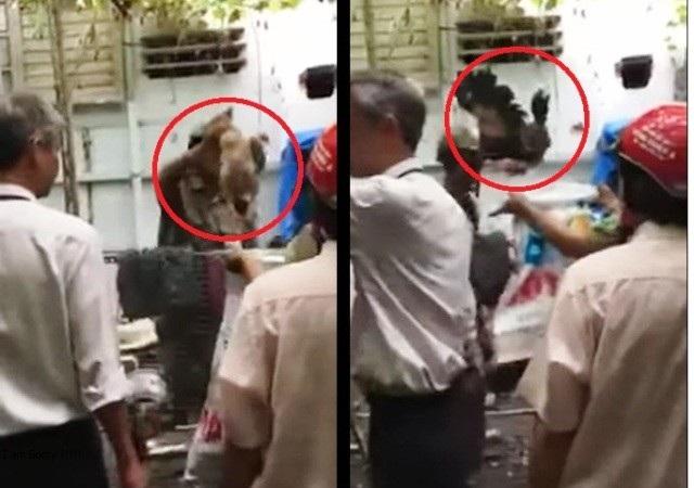 Đoàn kiểm tra của phường 15, quận Tân Bình, bẻ khóa vào nhà dân bắt 9 con gà Đông Tảo để tiêu hủy (ảnh cắt từ clip)