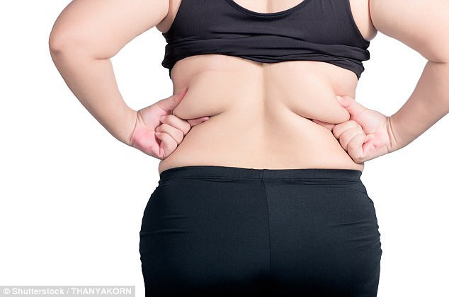 30% ca ung thư là do béo phì và đái tháo đường - 1