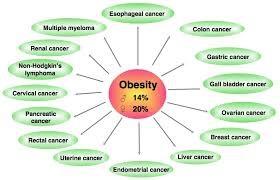Tại sao béo phì dễ bị ung thư? - 2