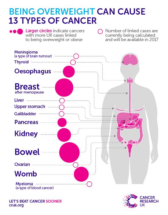 Tại sao béo phì dễ bị ung thư? - 1