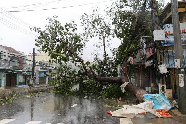 37 người chết và mất tích do bão số 12 (Ảnh minh họa: Viết Hảo).
