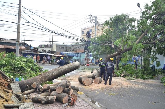 Cơn mưa lớn bất thường kèm theo gió giật mạnh xảy ra trên diện rộng ở TPHCM vào chiều 30/3 đã khiến nhiều cây xanh bị bật gốc, gãy nhánh đè lên nhà dân và ô tô. (Ảnh: Đình Thảo)