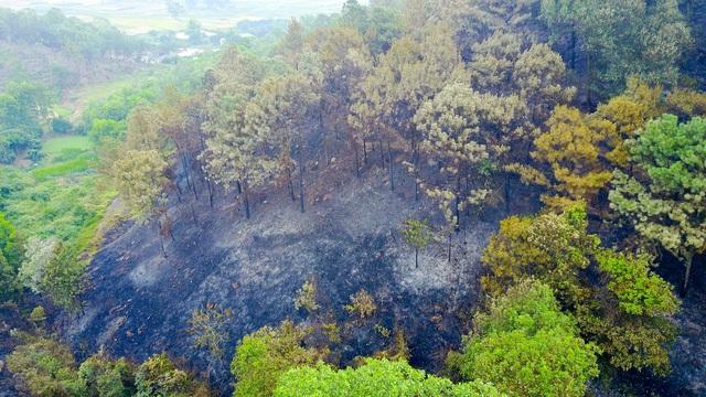 Hiện trường vụ cháy rừng lớn nhất Hà Nội (Ảnh: Toàn Vũ)