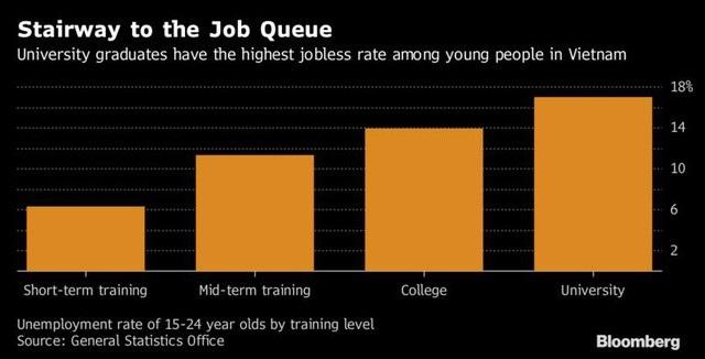 Cử nhân đại học có tỷ lệ thất nghiệp cao nhất trong lao động trẻ Việt Nam. Nguồn: Bloomberg.
