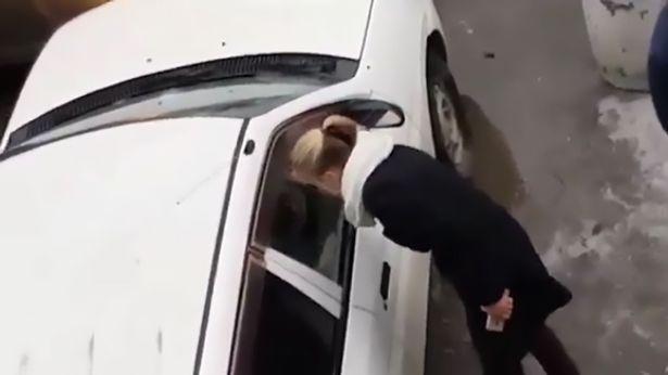 Bóng hồng đại chiến giành chỗ đậu xe - 1