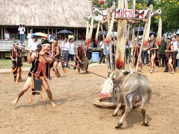 Những lễ hội ghê rợn như đâm trâu, chém lợn... đang được chỉnh dần cho phù hợp với đời sống văn hoá xã hội.