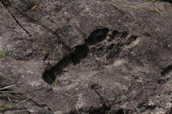 Người khổng lồ từng dạo bước khắp Trái Đất? - 2