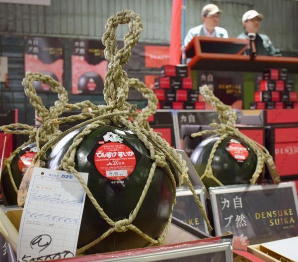 Dưa hấu đen Densuke được bày bán với giá hàng nghìn USD/trái