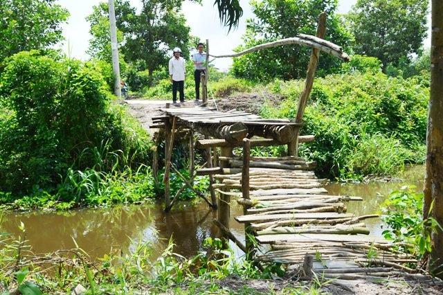 Nhóm ông Sáu Nhỏ đi khảo sát chuẩn bị xây cây cầu mới thay cầu cây này.