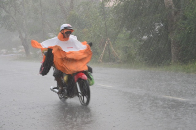 Liên tiếp nhiều ngày qua, mưa lớn trái mùa bất thường xảy ra ở ĐBSCL.