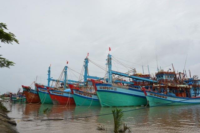 Nhiều tàu cá Sóc Trăng đã vào trú đậu an toàn.
