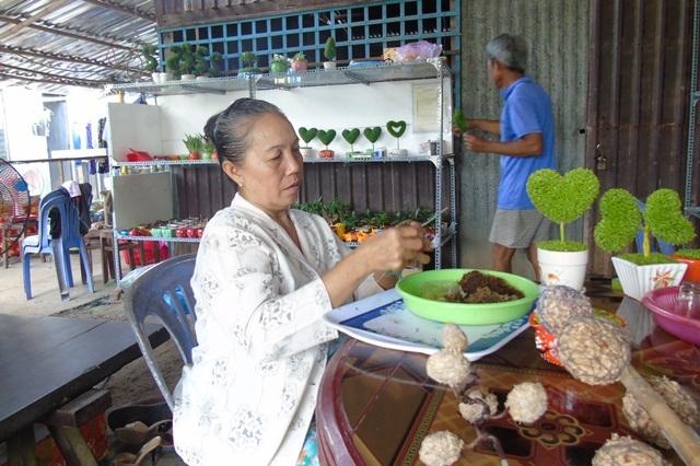 Bà Nguyễn Thị Kiều Oanh đang tạo khung cho các chậu cỏ may mắn của mình
