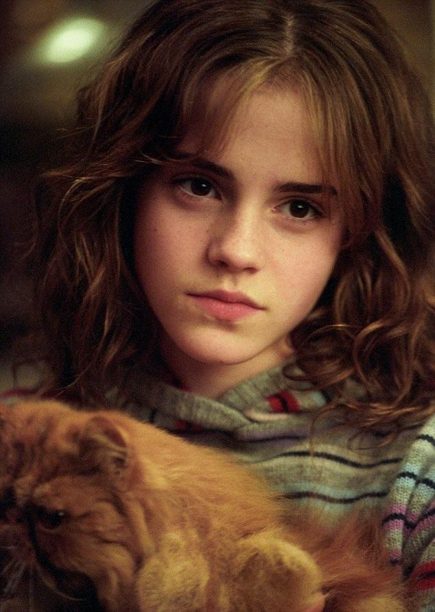 Ngay khi xuất hiện trong vai Hermione Granger trong loạt phim Harry Potter, Emma Watson đã được người yêu điện ảnh chú ý. Càng lớn, nhan sắc, tài năng và phong cách sống của Hermione càng hứa hẹn rằng cô sẽ trở thành một ngôi sao điện ảnh sáng giá, sự thực đã diễn ra đúng như vậy.