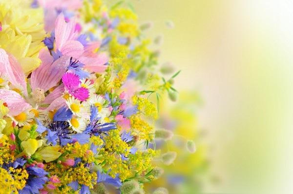 """Bộ sưu tập hình nền """"sắc hoa"""" tuyệt đẹp mừng ngày Phụ nữ Việt Nam 20/10 - 15"""