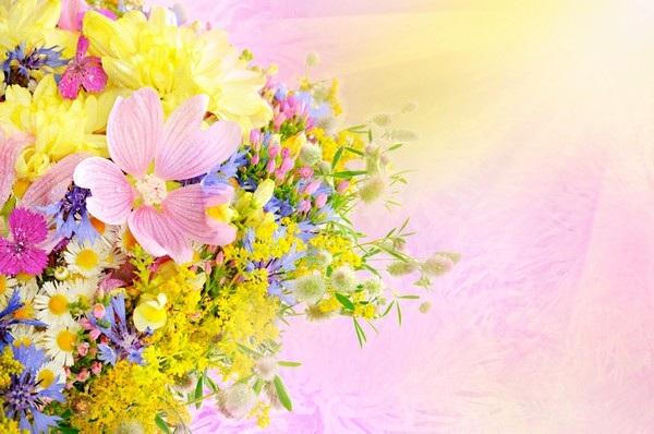 """Bộ sưu tập hình nền """"sắc hoa"""" tuyệt đẹp mừng ngày Phụ nữ Việt Nam 20/10 - 16"""