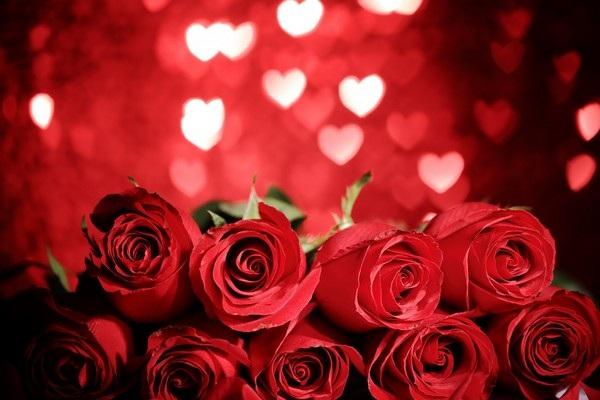 """Bộ sưu tập hình nền """"sắc hoa"""" tuyệt đẹp mừng ngày Phụ nữ Việt Nam 20/10 - 18"""