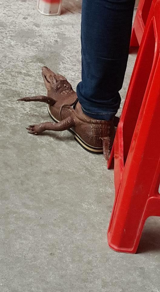 Đôi giày cá sấu nguyên cả đầu, chân, tay