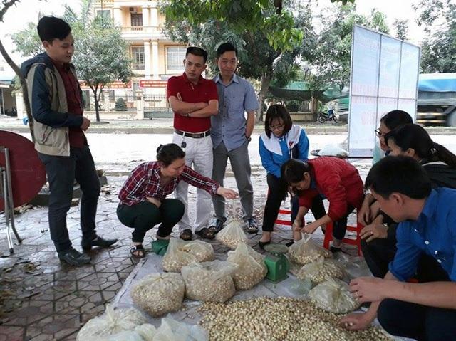 Đoàn Thanh niên huyện Đô Lương giải cứu hành tăm cho nông dân