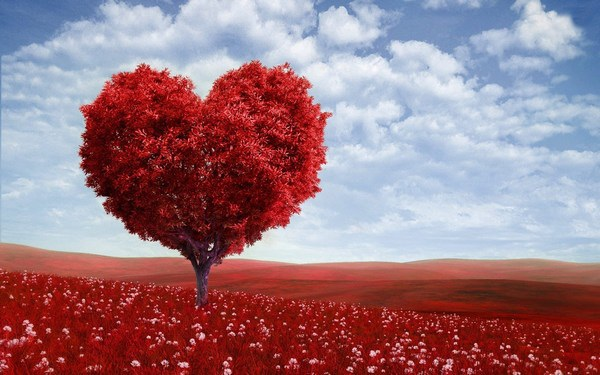 """Bộ sưu tập hình nền chủ đề """"tình yêu"""" cực lãng mạn cho ngày Valentine - 4"""