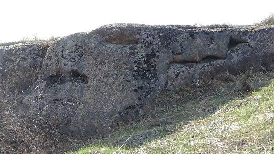 Nằm gần khối đá hình rồng là tảng đá hình điểu sư.